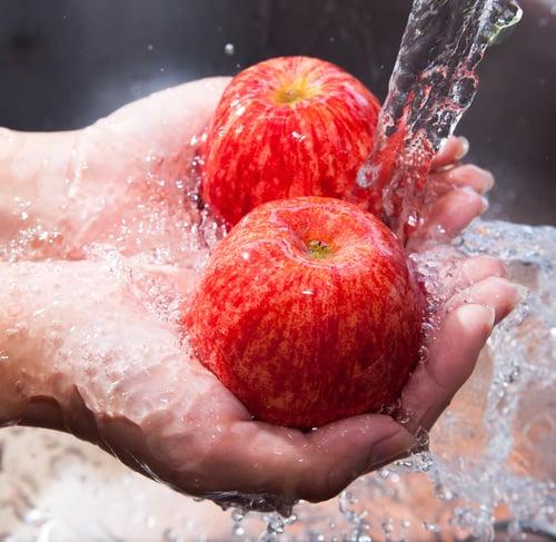 verbandswasserwerk_obst_waschen